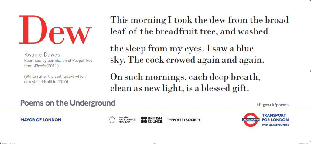 Dew, Kwame Dawes ' This morning I took the dew from the broad leaf of the breadfruit tree, and washed the sleep from my eyes.
