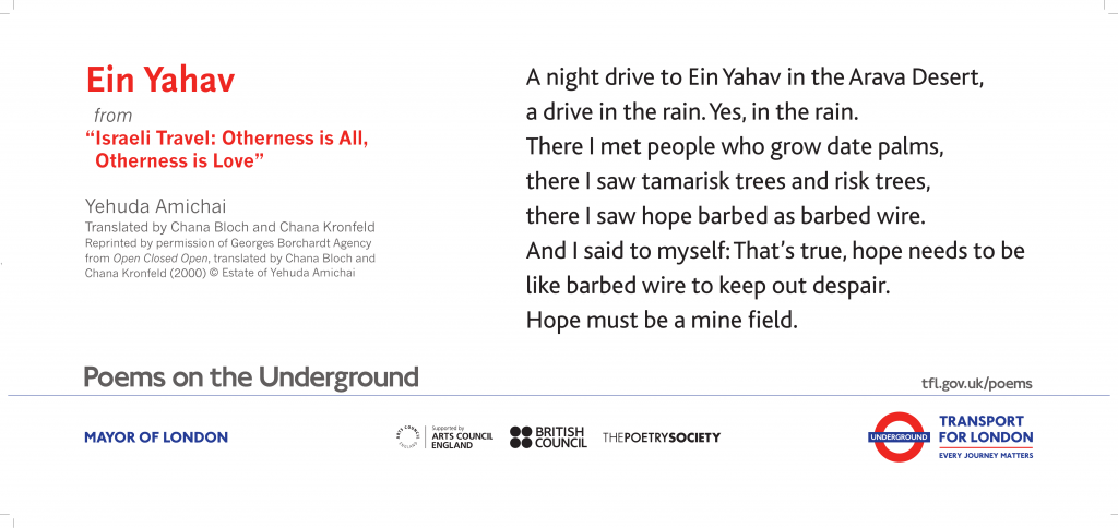 "Ein Yahav from ""Israeli Travel: Otherness is All, Otherness is Love"" Yehuda Amichai Translated by Chana Bloch and Chana Kronfeld ' A night drive to Ein Yahav in the Arava Desert, a drive in the rain. Yes, in the rain.'"