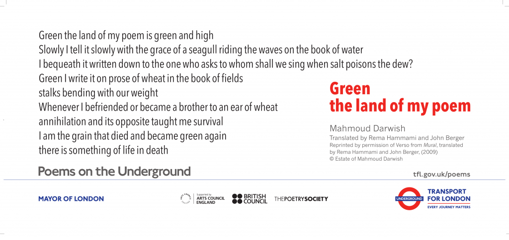 Green the land of my poem, Mahmoud Darwish 'Green the land of my poem is green and high Slowly I tell it slowly with the grace of a seagull riding the waves on the book of water I bequeath it written down to the one who asks to whom shall we sing when salt poisons the dew?'