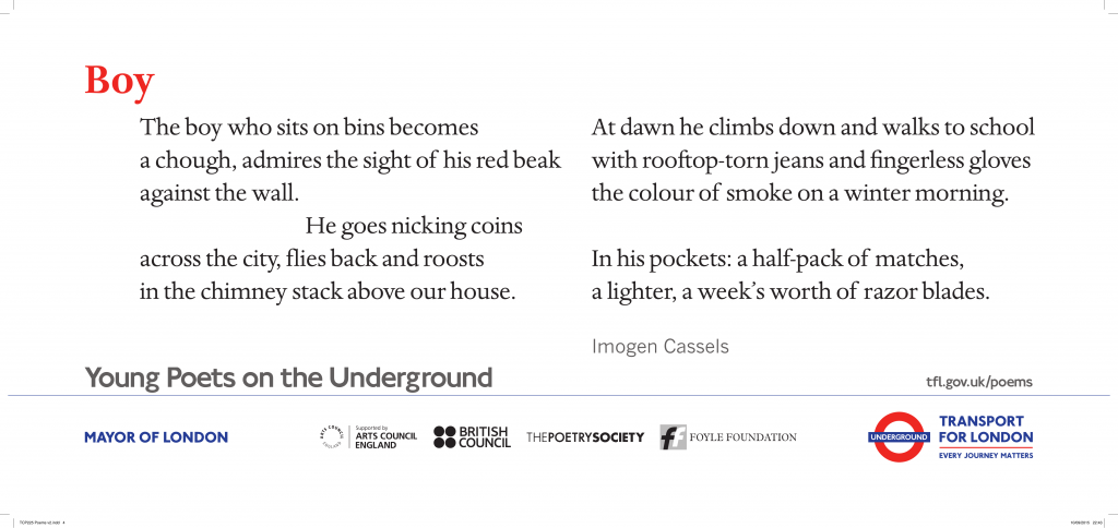 Boy, Imogen Cassels 'The boy who sits on bins becomes a chough, admires the sight of his red beak against the wall.'