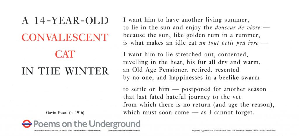 Gavin Ewart , A 14 year old Convalescent Cat in the Winter ' I want him to have another living summer, to lie in the sun and enjoy the douceur de vivre- because the sun, like golden rum in a rummer, is what makes an idle cat un tout petit peu ivre-'