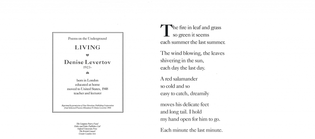 Living, Denise Levertov ' The fire in leaf and grass so green it seems each summer the last summer. The wind blowing, the leaves shivering in the sun, each day the last day.'