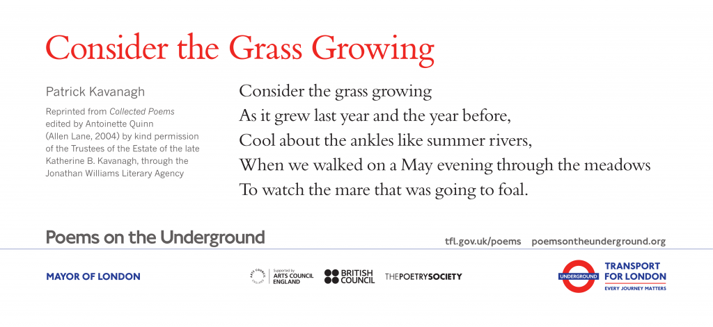 Consider the Grass Growing , Patrick Kavanagh 'Consider the grass growing As it grew last year and the year before, Cool about the ankles like summer rivers, When we walked on a May evening through the meadows To watch the mare that was going to foal.'
